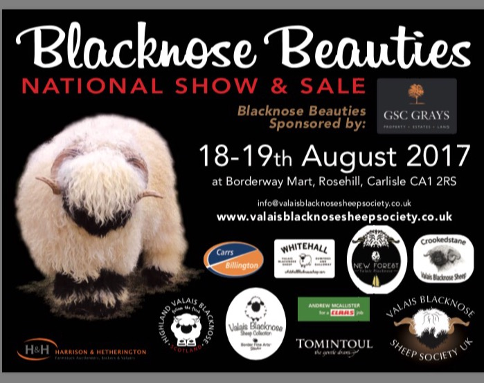 Valais Blacknose sheep sold to a top of 7,100gn at the Blacknose Beauties national show and sale in Carlisle.