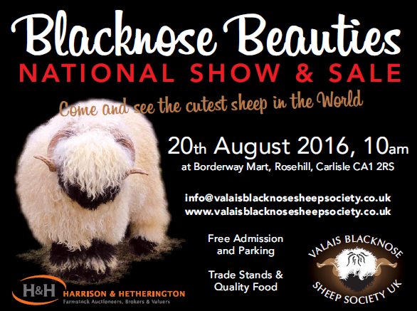 Blacknose Beauties National Show & Sale