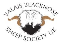 Valais Blacknose Sheep Society UK