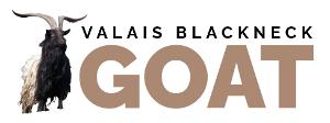 Valais Blackneck Goat